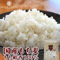 もち麦 国産 900g 送料無料 令和元年産 栃木県産 もち絹香
