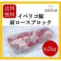 送料無料 イベリコ豚 ブロック スペイン産 豚 ぶた イベリコ