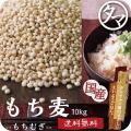 もち麦 国産 10kg 雑穀 雑穀米 食物繊維 無添加 令和元年度産 β-グルカン ダイエット ヘル...
