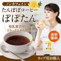 たんぽぽコーヒー タンポポコーヒー ノンカフェイン コーヒー お茶 飲み物 カップ用30個入 ティー...