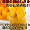 【IQF冷凍カットフルーツ】 マンゴー ダイスカット 500g 12袋入り 冷凍 食品 フルーツ 新...