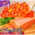 ふるさと納税 白糠町 「いくら醤油漬(鮭卵)500g(250g×2)」×「エンペラーサーモン1,00...