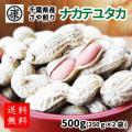 令和2年産新豆 千葉県産 落花生 ナカテユタカ 殻付き 500g(250g×2袋)