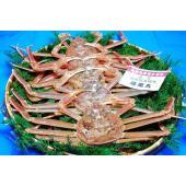 船上で史上初! 鮮度をそのまま保つ 『滅菌海水システム搭載』の船で採れた新鮮な蟹を 新鮮なままお届け...