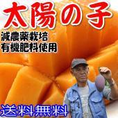 『太陽の子』生産者の黒木利男さんは、31年前に宮崎県で初めてマンゴー栽培をスタートした、 宮崎県随一...