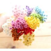 入手困難なレア花材、スターフラワ−10色展開でご用意!現在入手困難なレア花材のため、数量限定販売です...
