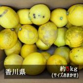 ■約5kg サイズおまかせ(混合)   外皮にキズがある訳あり品ですが、果汁はフレッシュ。 果汁を...