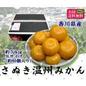 ■約5kg Sサイズ/60玉前後  日照時間が長く、降雨量が少ないことでみかん栽培が盛んな 香川県...