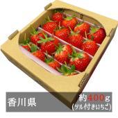■約400g入り  香川県オリジナル品種いちご「さぬきのひめ」。 「さぬきひめ」という名前は、「香川...