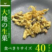 【ポイント】 焼きほたての貝ヒモをソフトな味付けにしました。 お酒のおつまみや、小腹が空いた時のおや...