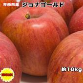 【わけあり】【青森県】【ジョナゴールド】【りんご】【10キロ】