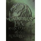 ウインターCP オススメ商品 種別:DVD GALNERYUS 解説:2010年9月12日に渋谷AX...