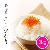 米どころ新潟から産地直送!新鮮なコシヒカリをお届けいたします。大変お求め安い価格で当店人気ナンバーワ...