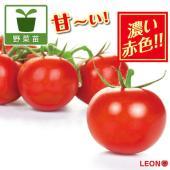 ヘルシーでおいしそうな外観で、まさにトマトはこうでなくてはならないという外観形質を持つトマト。非常に...