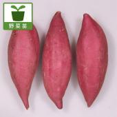 シルクスイートは、青果用品種として育種された品種です。絹(シルク)のように滑らかな舌ざわりと甘み(ス...
