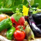 鹿児島県と宮崎県の太陽の光をたっぷり浴びて、きれいな水と栄養豊かな土でたくましく育った朝採れ新鮮野菜...
