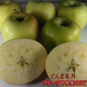 ぐんま名月・青りんご・りんご・蜜入り・青森・送料無料・10kg・訳あり