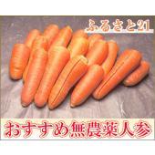 ■内容量 5kg箱  ■送料 無料  ■内容 無農薬にんじん(ふるさと21) 加工用規格外品 ※こち...