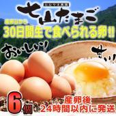 濃厚卵黄の自然卵!安心安全! ★佐賀県七山村で作られた新鮮たまご! ★産卵日から30日間生で食べられ...