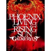 ウインターCP オススメ商品 種別:DVD GALNERYUS 解説:2011年に行なわれたツアー「...