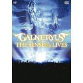 ウインターCP オススメ商品 種別:DVD GALNERYUS 解説:SHO、Syu、TAKA、YU...
