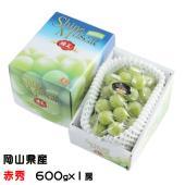 シャインマスカットは、大粒で種が無く、甘く豊潤なマスカットの香りがする皮ごと食べられる次世代の葡萄で...