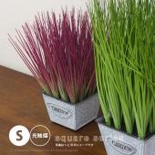 ■特徴 当店人気の人工観葉植物シリーズ。 お部屋のワンポイント、お店のディスプレイにもぴったりです。...