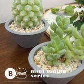■特徴  当店人気の人工観葉植物シリーズ。 お部屋のワンポイント、お店のディスプレイにもぴったりです...