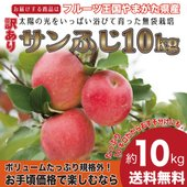 お待たせしました!! フルーツ王国山形から甘くておいしりんごを全国にお届けします。山形は全国的にも昼...