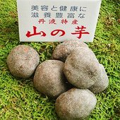 """江戸時代より品質改良重ね栽培され、素朴な風味と栄養に富むことから""""芋類の王様""""と賞賛される丹波篠山特..."""