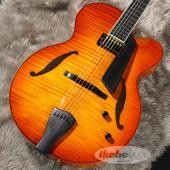 名門「Sadowsky Guitars」が送り出すアートトップシリーズ!稀少なJim Hall Mo...