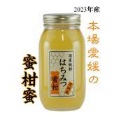 国産 蜂蜜 愛媛県産 みかんの蜜 2018年 新蜜。  蜜柑の単花蜜です。柑橘系の爽やかでフルーティ...