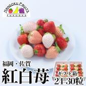 博多の定番あまおうイチゴと 淡いピンクの希少品種の 淡雪イチゴを 九州・福岡から直送。
