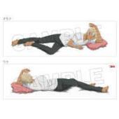 TVアニメ「名探偵コナン」から、豪華描きおろしイラストを使用した抱き枕カバーに、安室透が登場!160...