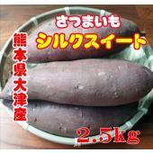 2個以上購入で送料無料! 熊本県大津産「シルクスイート」販売期間:11月〜7月 シルクスイートは、上...