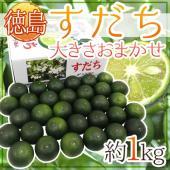 【送料無料】果汁を絞って、皮をすりおろして!お料理に、紅茶に、お酒に、使い方色々!徳島県特産の香酸柑...