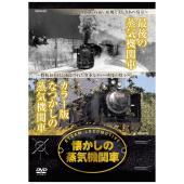 忘れられぬ遠い故郷と美しきあの情景、昭和40年代に撮影された貴重な蒸気機関車の映像を収録、カラー版の...