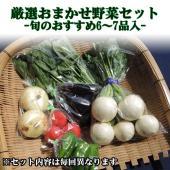 まちのえきスタッフが毎週近隣のお客様に宅配して喜ばれている野菜セットを、ネット通販でもご利用出来るよ...