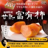 2018年11月下旬より発送予定  福岡県は全国でも指折りの甘柿の産地。 柿の王様の異名を持つ富有柿...