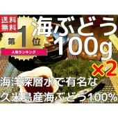 海洋深層水で有名な沖縄県久米島産100%の海ぶどうです。 プチプチっとした食感にこだわっただけあって...
