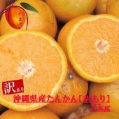 柑橘の王様とも呼ばれる、桶柑(タンカン)は、柑橘類の中でも最も糖度が高い、亜熱帯の島・沖縄を代表する...