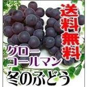 ★岡山特産の温室ぶどうです。◆グローコールマン (1kg)2房。真冬のぶどうグローコールマンは、岡山...