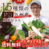 全て九州産の野菜で詰め合わせ、15品たっぷり入った安心、安全なおまかせセットです。 単品野菜の追加も...