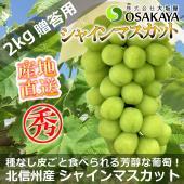商品番号:shinemuscat2kg02 商品名 :長野県北信州 中野 山ノ内産 シャインマスカッ...
