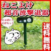店長のおすすめポイント  ◆わかりやすいRcompanyオリジナルの日本語取扱説明書付です。  ◆高...