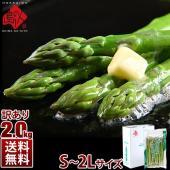 ■北海道産グリーンアスパラ(ご自宅用) 6kg1箱 ・グリーン太めタイプ(L〜2L) ・グリーン細め...