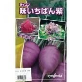 皮は紫。中は薄紫の短太大根。甘酢につけたり、サラダに最適! ■容量は季節により変更となる場合がござい...