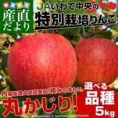 岩手県JAいわて中央より産地直送  商品名:特別栽培リンゴ 内容量:5キロ(14から23玉) 原産地...