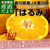 香川県JA香川県より産地直送します。  名称:はるみ 内容量:約5キロ(12から28玉前後) 原産地...