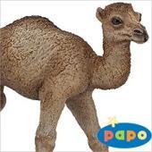 ●フランスのPapo社が製作したWILD ANIMALS(陸上動物) シリーズのヒトコブラクダの仔(...